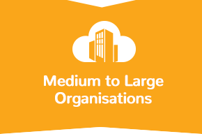 medium-organisations